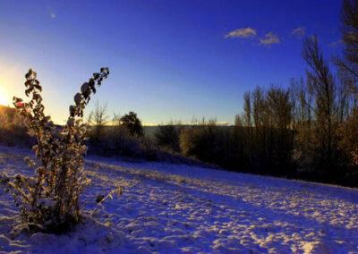 Noceda nevada 2